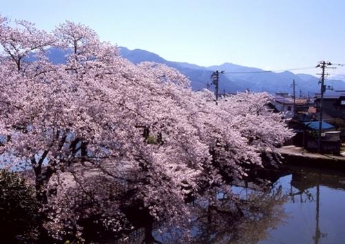 FWaizuwakamatsuRG003(1).jpg