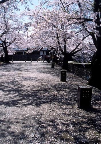 FWaizuwakamatsuRG005(2).jpg