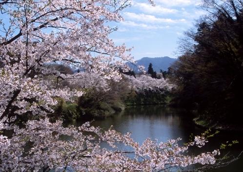 FWaizuwakamatsuRG020(1).jpg