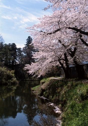 FWaizuwakamatsuRG023(1).jpg