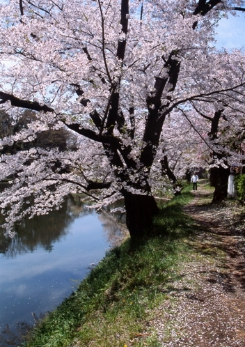 FWaizuwakamatsuRG024(1).jpg