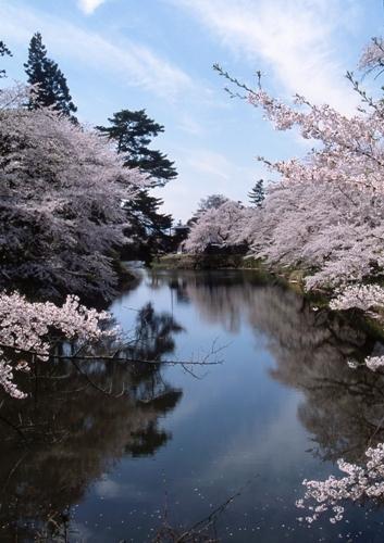 FWaizuwakamatsuRG025(1).jpg