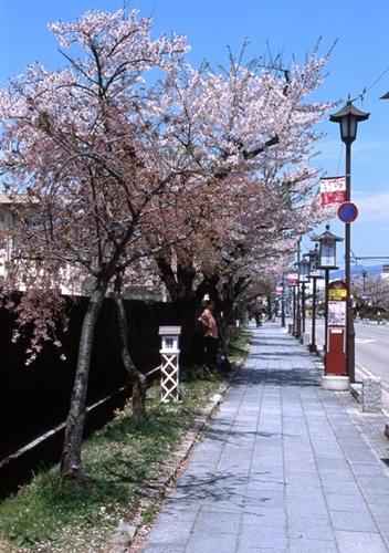 FWaizuwakamatsuRG036(1).jpg