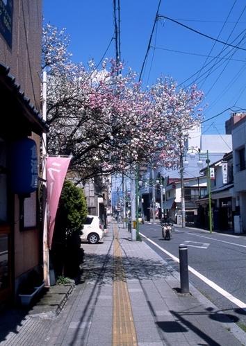 FWaizuwakamatsuRG154(1).jpg