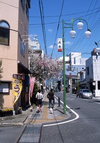 FWaizuwakamatsuRG158(1).jpg