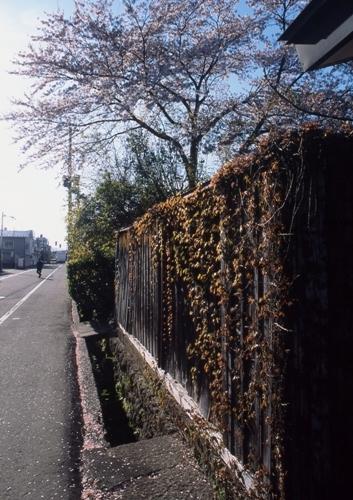 FWaizuwakamatsuRG219(1).jpg