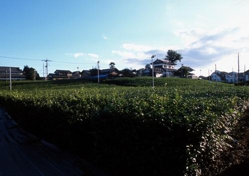 FWamusashinoRG008(1).jpg