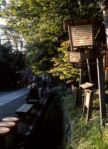 FWamusashinoRG015(1).jpg