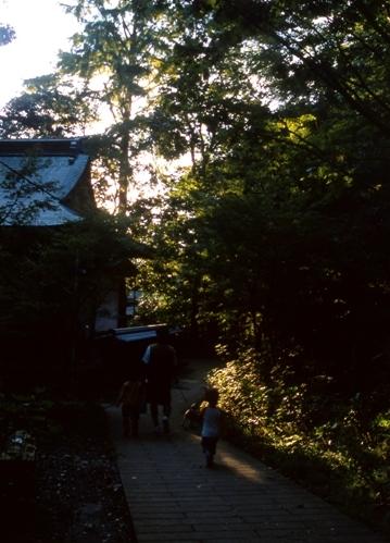 FWamusashinoRG016(1).jpg