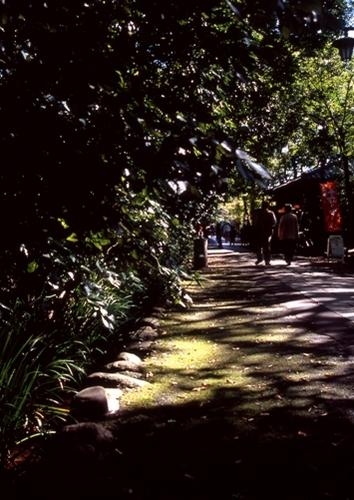 FWamusashinoRG032(1).jpg