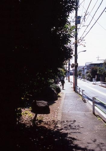 FWamusashinoRG045(1).jpg