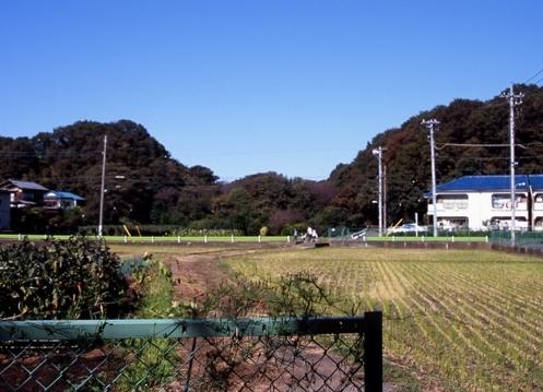 FWamusashinoRG054(1).jpg