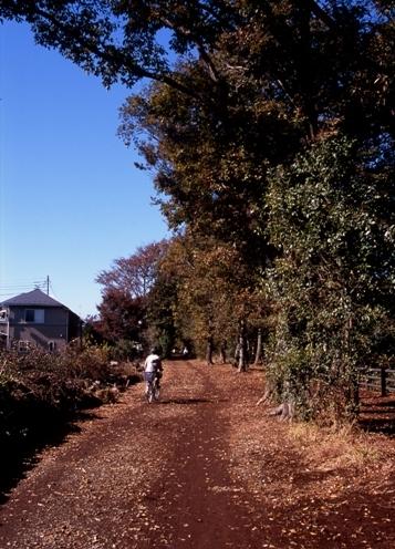 FWamusashinoRG068(1).jpg
