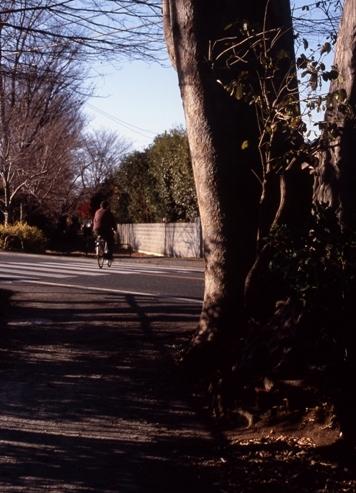 FWamusashinoRG189(1).jpg