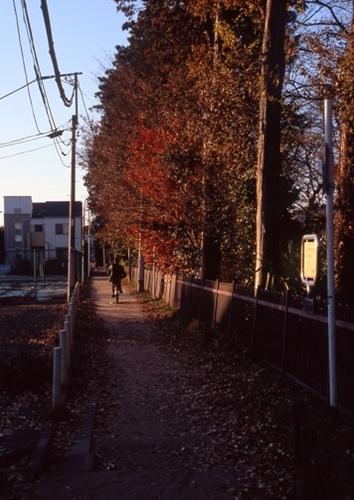 FWamusashinoRG202(1).jpg