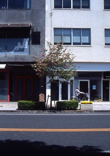 FWashikagaRG008(1).jpg