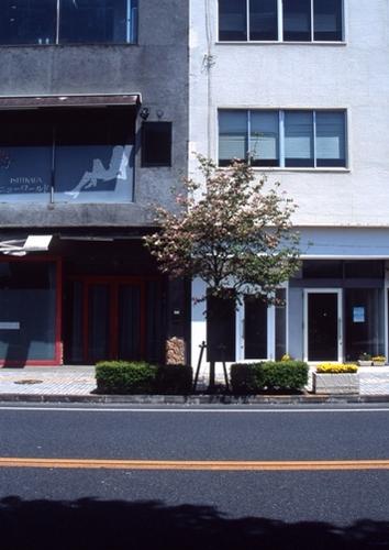 FWashikagaRG009(1).jpg
