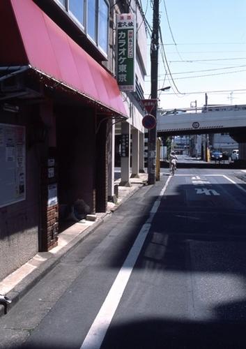 FWashikagaRG017(1).jpg