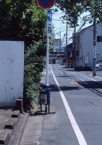 FWashikagaRG018(1).jpg