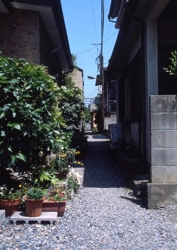 FWashikagaRG019(1).jpg