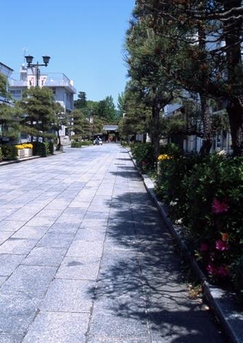 FWashikagaRG021(1).jpg