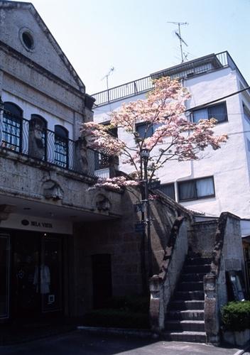 FWashikagaRG026(1).jpg