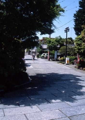 FWashikagaRG032(1).jpg