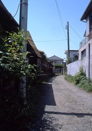 FWashikagaRG033(1).jpg