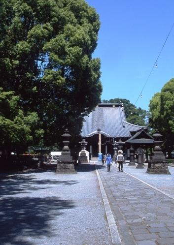 FWashikagaRG039(1).jpg