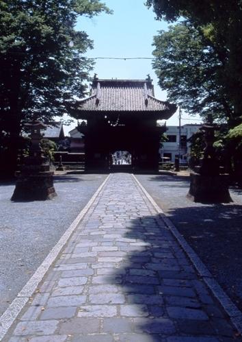 FWashikagaRG040(1).jpg