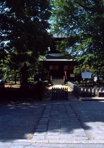 FWashikagaRG041(1).jpg