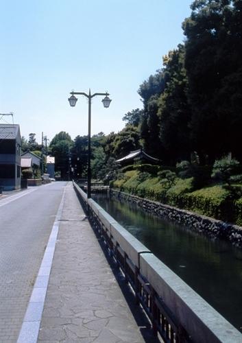 FWashikagaRG042(1).jpg