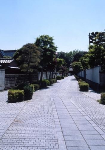 FWashikagaRG046(1).jpg