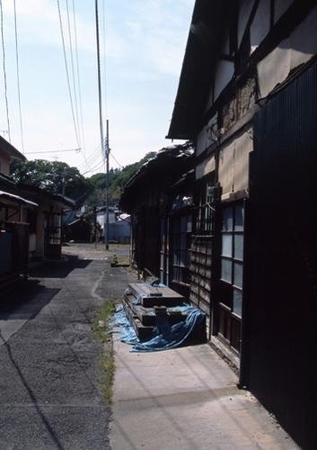 FWashikagaRG060(1).jpg
