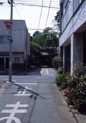 FWashikagaRG064(1).jpg