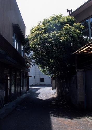 FWashikagaRG067(1).jpg