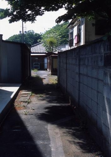 FWashikagaRG071(1).jpg
