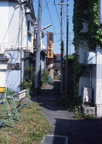 FWashikagaRG078(1).jpg