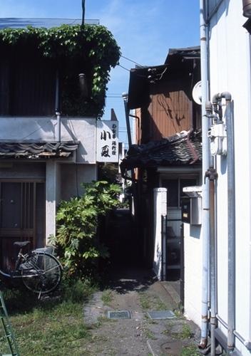 FWashikagaRG079(1).jpg