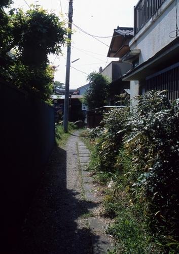 FWashikagaRG087(1).jpg