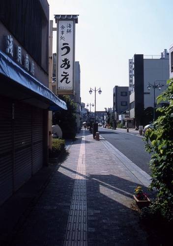 FWashikagaRG095(1).jpg