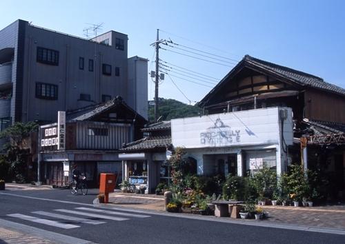 FWashikagaRG098(1).jpg
