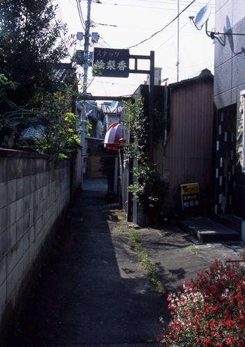 FWashikagaRG108(1).jpg