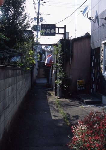 FWashikagaRG108(2).jpg