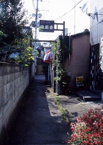FWashikagaRG108(3).jpg