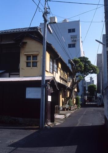 FWashikagaRG119(1).jpg