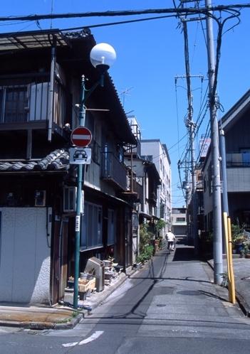 FWashikagaRG131(1).jpg