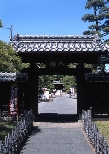 FWashikagaRG165(1).jpg