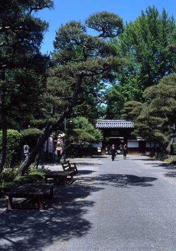 FWashikagaRG166(1).jpg