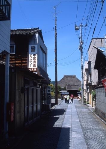 FWashikagaRG167(1).jpg